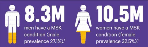 An infographic explaining the split of MSK conditions between men and women.