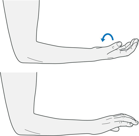 A diagram of someone twisting their wrist, which is an exercise for tennis elbow.