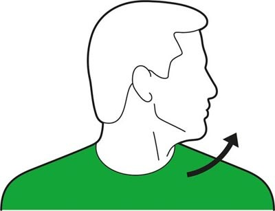 Head turn to the right exercise for the neck.