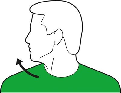 Head turn to the left exercise for the neck.