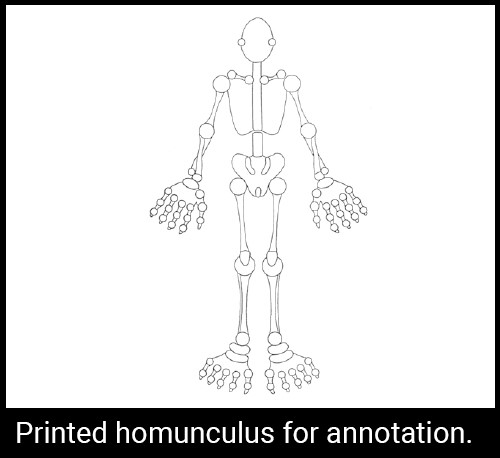 Printed homunculus for annotation.